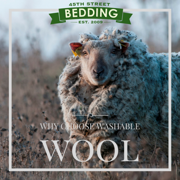 Why Choose Washable Wool Bedding