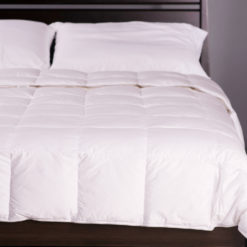 Down Light Comforter Lifestyle