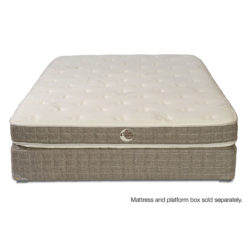Whitman Plush Mattress Front View